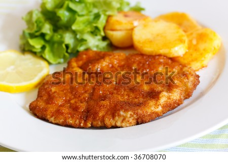 Veal Cutlet- Schnitzel - with Lettuce - stock photo