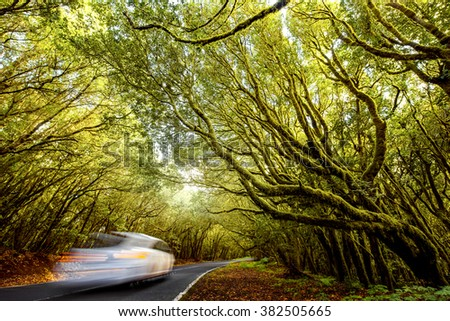 Vechicle road with motion blurred car in the forest in Garajonay national park on La Gomera island in Spain - stock photo