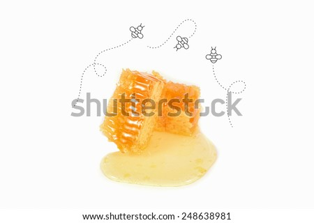 Vector Honey Bee Flying On Honeycomb Close Up - stock photo