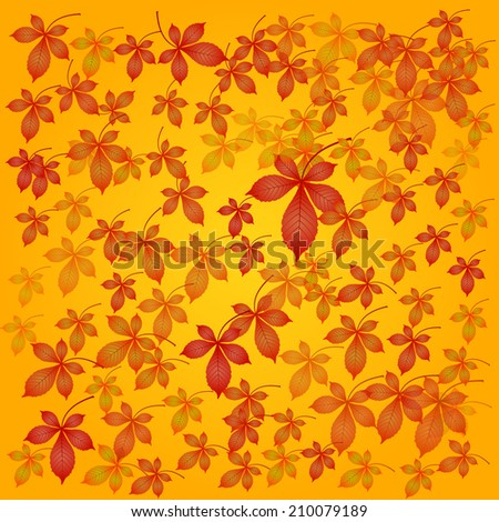 vector seasonal background with horse chestnut detailed leaves colored in autumnal colors - season autumn - gradient, different size and transparency