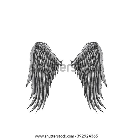 Vector sketch of two big white wing