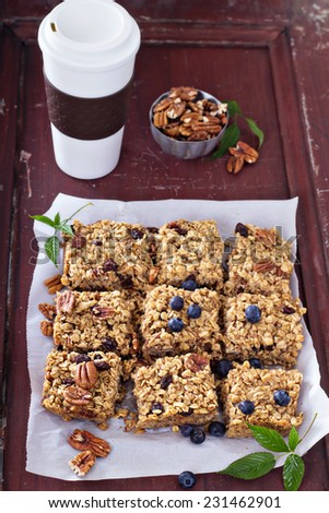 Vegan baked oatmeal squares with pecans, raisins and fresh blueberry - stock photo