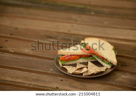 vegan sandwich on picnic table with copy space - stock photo