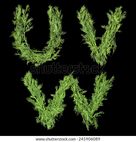 Vegetable Alphabet of sprigs of dill isolated on a black background. Letters U, V, W - stock photo