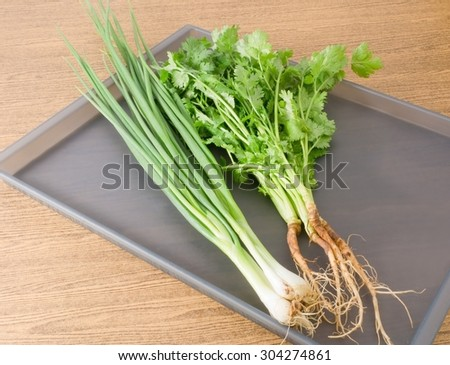 Vegetable and Herb, Bunch of  Parsley, Chinese Parsley or Coriander and Scallion for Seasoning in Cooking on A Tray. - stock photo