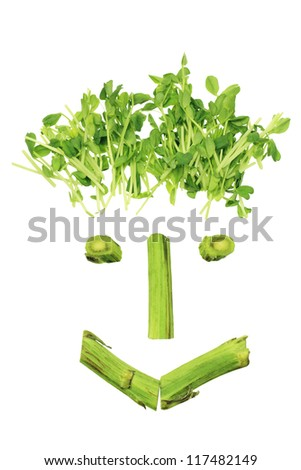 Vegetable Face on White Background - stock photo