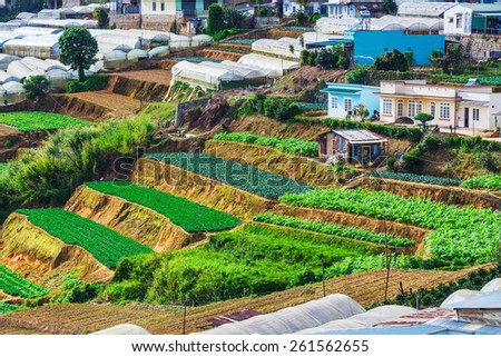 Vegetable fields and Housein highland, Dalat, Vietnam. Da lat is one of the best tourism city in Vietnam. Dalat city is Vietnam's largest vegetable and flowers growing areas. - stock photo