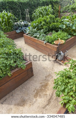 Vegetable garden beds - stock photo