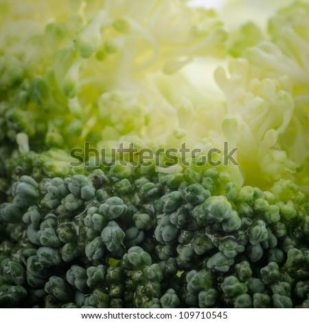 vegetable green broccoli macro background - stock photo