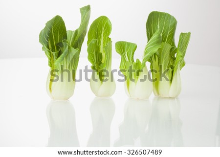 Vegetable isolated / Vegetables green pakchoi isolated on white background