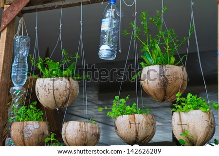 Balcony garden stock photos images pictures shutterstock for Flower pot making with waste material