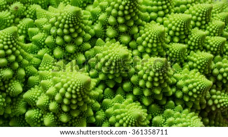 Vegetable's natural fractals  - stock photo
