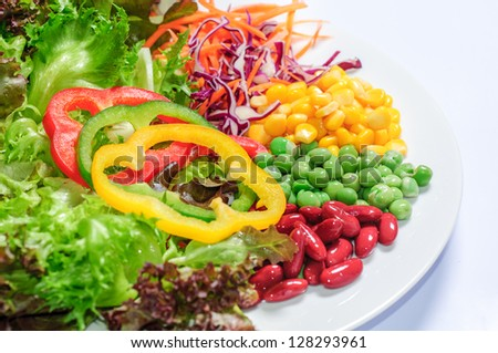 vegetable salad on white plate - stock photo