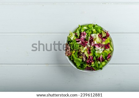 Vegetable salad with endive, fresh and healthy - stock photo