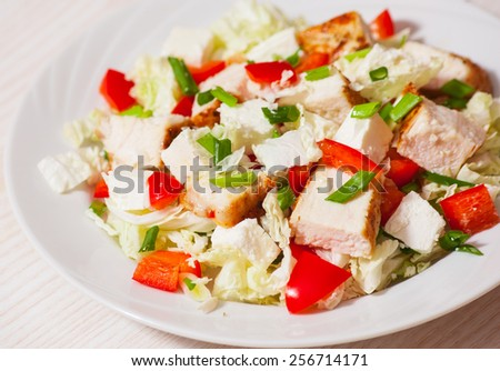 Vegetable salad with roasted chicken meat and cheese - stock photo