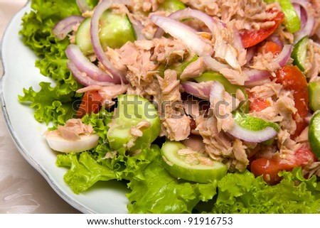 Vegetable salad with tuna fish closeup - stock photo