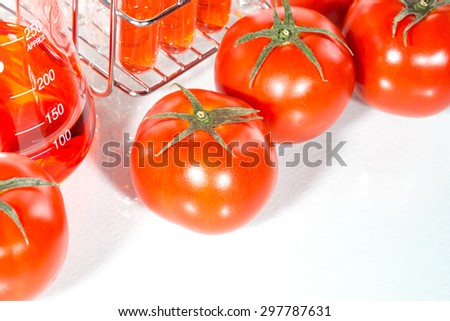vegetable test,  tomato, Genetic Modification, Scientific Experiment - stock photo