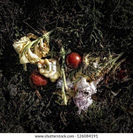 Vegetables and flowers on a Compost Heap/Artistically alienated to create a grungy somber atmosphere. - stock photo
