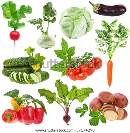 vegetables big collection set isolated on white background - stock photo