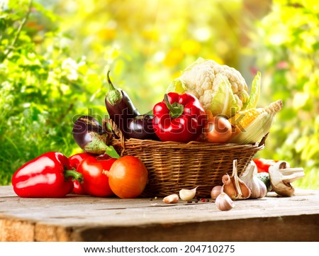 Vegetables. Fresh Organic Bio Vegetable in a Basket. Over Nature blurred bokeh Background. Gardening concept - stock photo