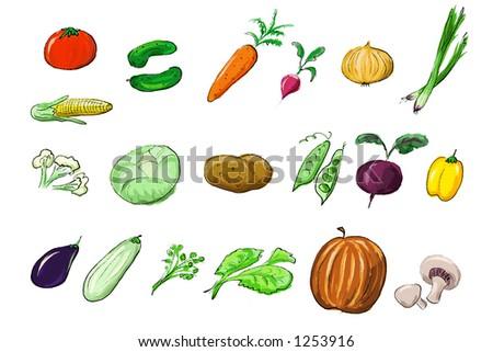 vegetables illustration - stock photo