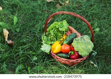 Vegetables in basket on green grass - stock photo