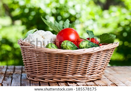 vegetables in basket on on old wooden table in garden