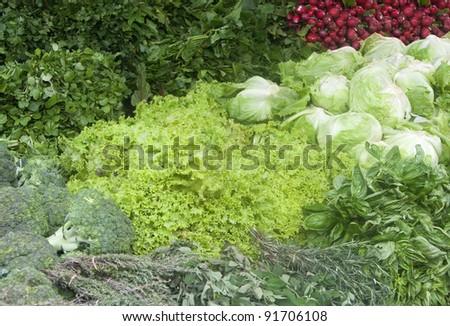 Vegetables on market in San Jose, Costa Rica - stock photo