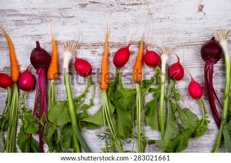 Vegetables on old white desk: baby carrots, garlic, beets, radishes. View from above, studio shot - stock photo