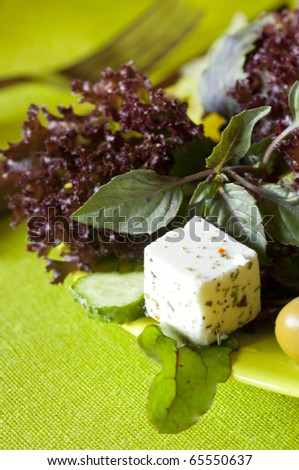 Vegetarian fresh healthy salad with tofu - stock photo