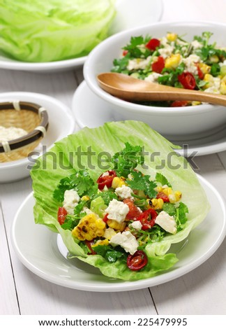 vegetarian lettuce wraps with tofu - stock photo