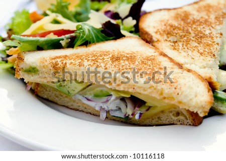 vegetarian sandwich with avocado and salad