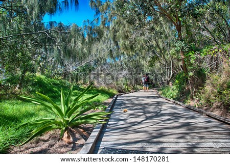 Vegetation and colors of Fraser Island, Australia - Winter Season. - stock photo