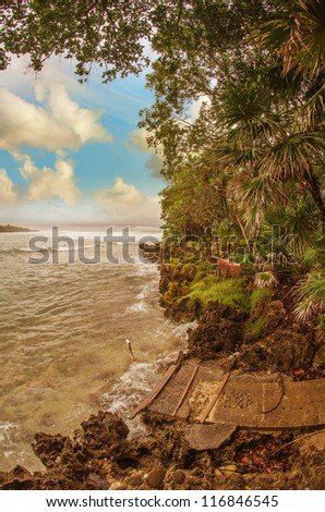 Vegetation and Rocks with Sea and Stormy Sky, Honduras