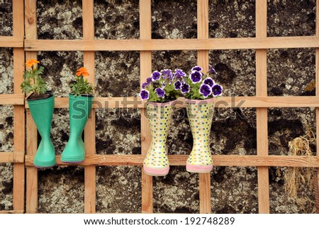 vegetation the art, flower bouquets in rubber boots - stock photo