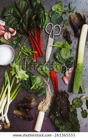 Veggies taken on dark metal table. Country vegetables from garden. Fresh vegetables: Swiss chard, green onions, bunch of wild garlic, leaves of spinach, garlic, leek. See series.Low key.  Top view.  - stock photo