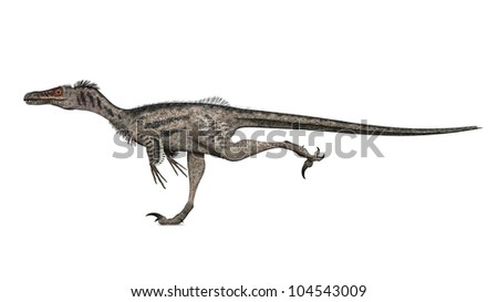 Velociraptor Computer generated 3D illustration - stock photo