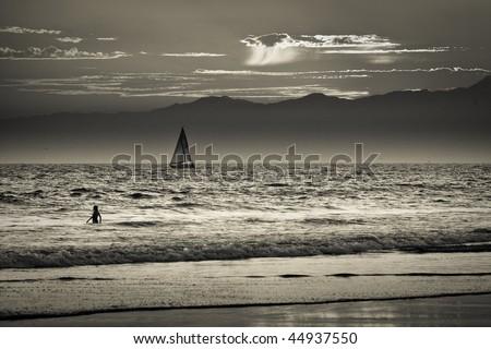 Venice beach in Los Angeles - stock photo