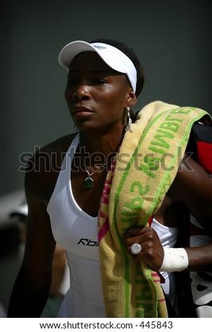 Venus Williams - stock photo