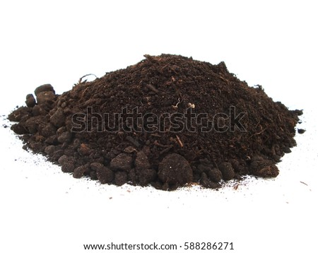 vermicompost isolated