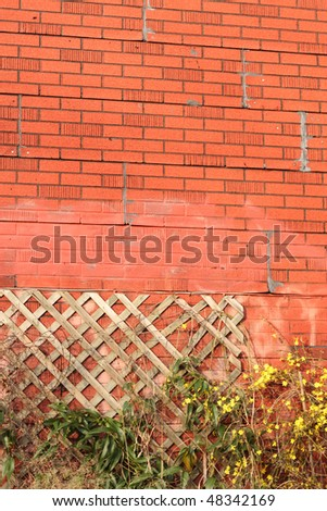 vertical brick wall texture with trellis - stock photo