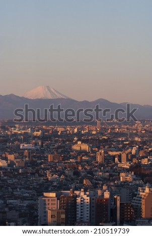 Vertical cityscape of Tokyo at sunrise with Mount Fuji in the background