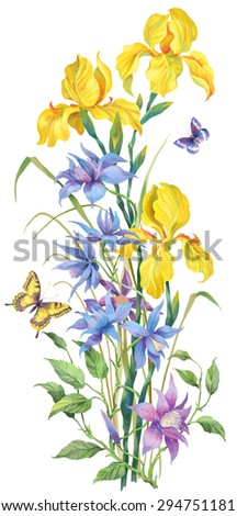 Vertical composition of yellow irises and clematis. Isolated on white background - stock photo
