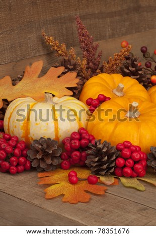 Vertical  Fall Still Life with Pumpkins and Gourd. - stock photo