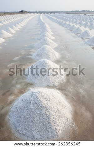 vertical form of Heap of sea salt in original salt produce farm make from natural ocean salty water preparing for last process before sent it to industry consumer - stock photo