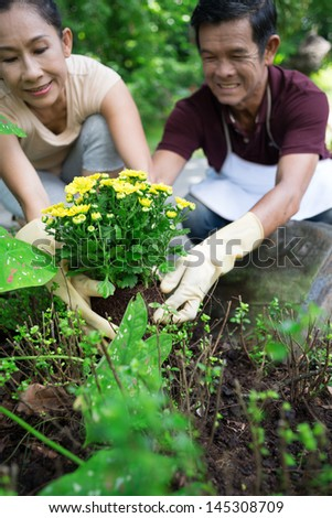 Vertical image of a senior couple cultivating plants in their garden