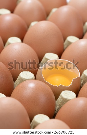 Vertical image of Cardboard egg box with one broken brown egg - stock photo