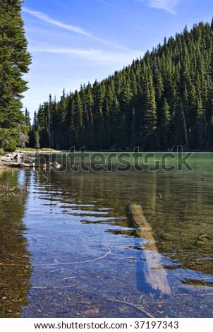 Vertical image of the blue-green water from the shoreline at Devil's lake, featuring a submerged log and the forested hillside in the background. - stock photo