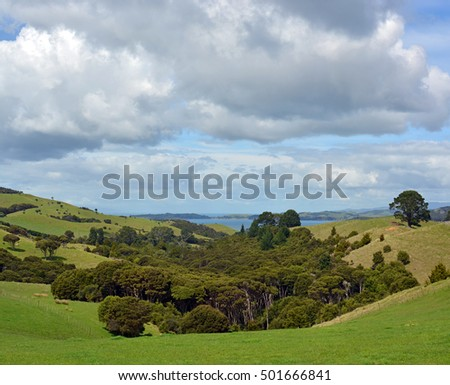 Vertical panoramic view of Native Bush and stormy sky at Stony Batter on Waiheke Island, Auckland, New Zealand