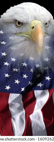 vertical patriotic banner of a bald eagle combined with US flag
